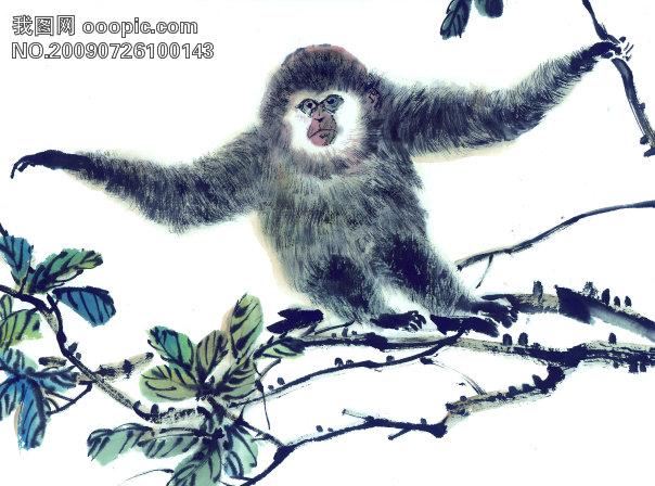 古图 动物 绘画 猴子 612312 美术绘画 文化艺术图片素材