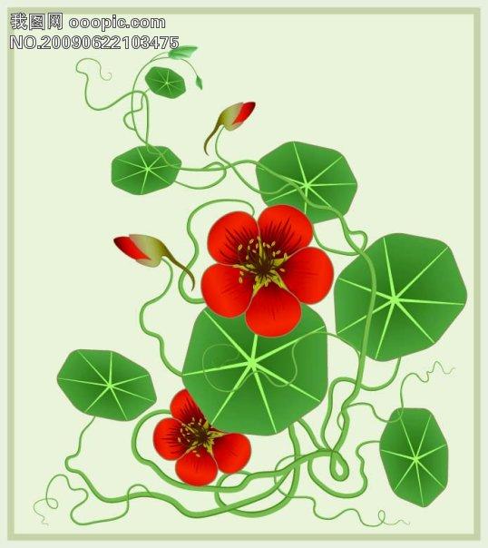 欧美花纹 花纹素材 花边素材 矢量花边